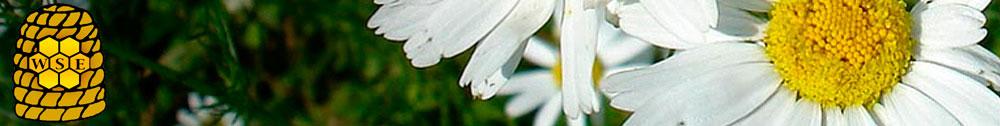 Bioprodukte Seip-Logo